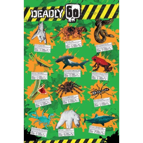 【ポスター】DEADLY 60 /Animals