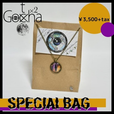 【Gotha×Gotha】SPECIAL BAG(ORANGE)【VV限定】