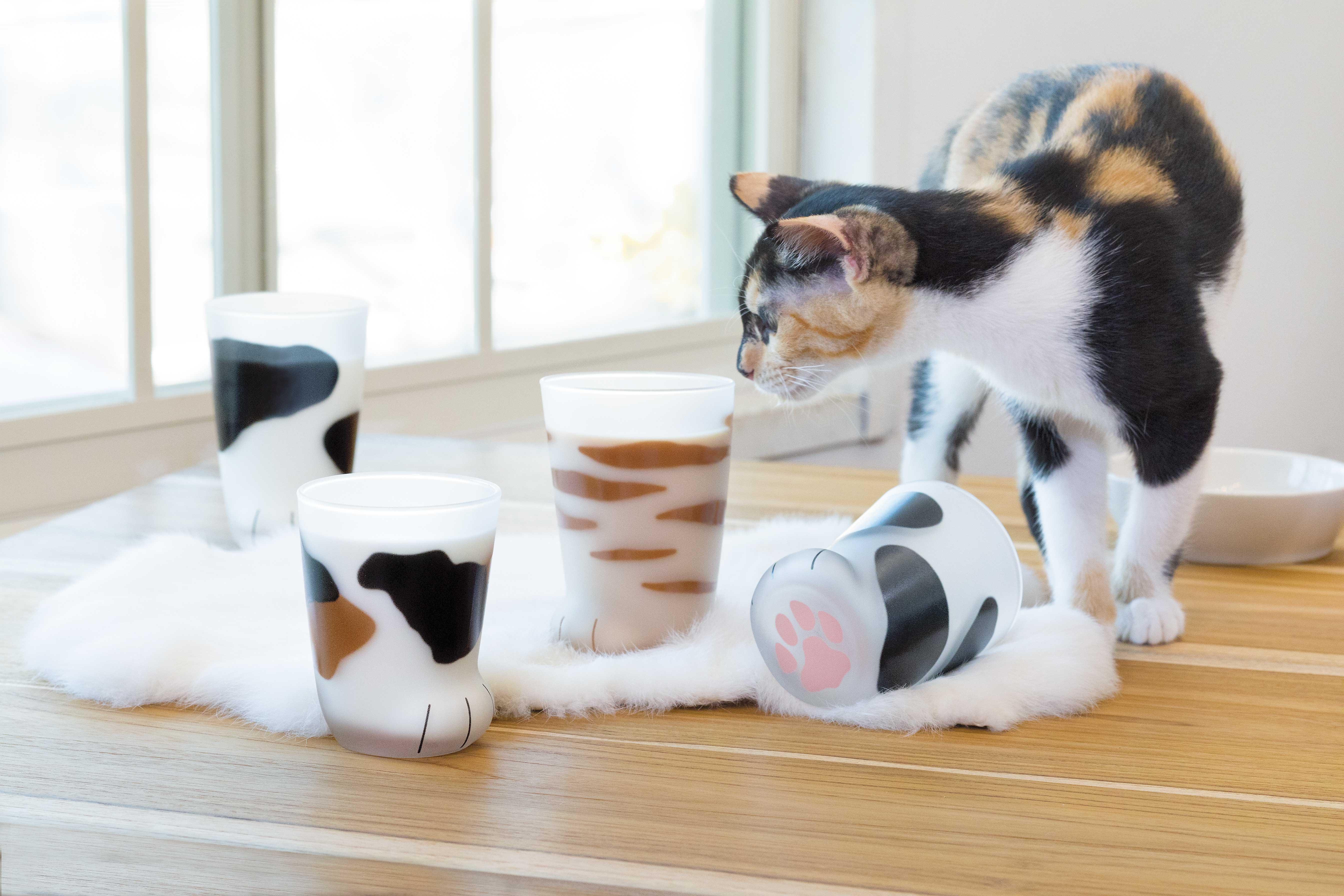 猫好きに絶対おすすめしたい猫雑貨