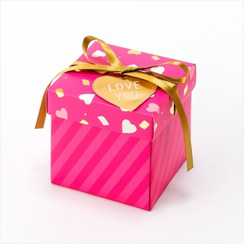 【SURPRISE FACTORY】SURPRISE BOX ALBUM(HEART)