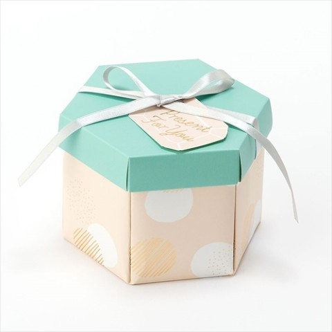 【SURPRISE FACTORY】SURPRISE BOX ALBUM(DOT)