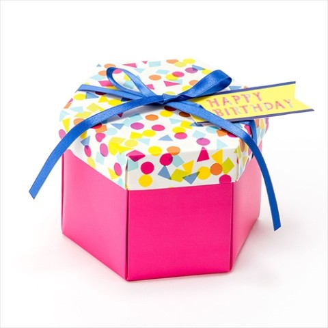 【SURPRISE FACTORY】SURPRISE BOX ALBUM(PINK)