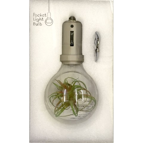 【照明】Pocket Light Bulb Stone