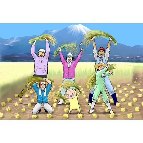 めめたん】ポストカード(収穫祭) / 雑貨通販 ヴィレッジヴァンガード ...