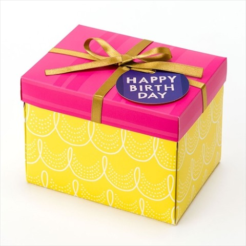 【SURPRISE FACTORY】SURPRISE BOX ALBUM(YELLOW)