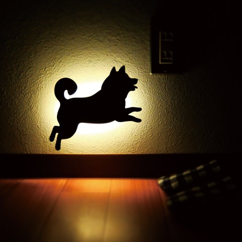 【That's Light!】SHIBA WALL LIGHTジャンプ